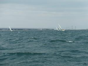 強風で盛り上がるヨットレース